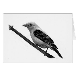 Scarlet Tanager Card