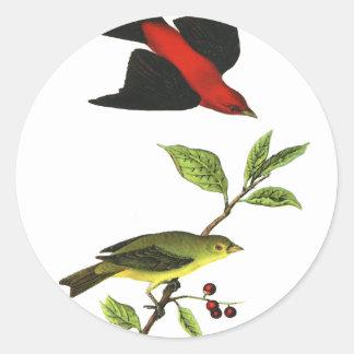 Scarlet Tanager Round Sticker
