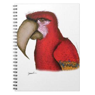 scarlett macaw, tony fernandes notebook