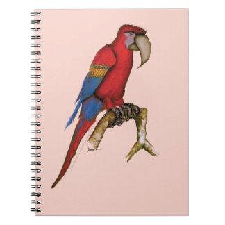 scarlett macaw, tony fernandes.tif notebook