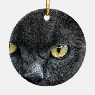 Scary Cat Eyes Round Ceramic Decoration