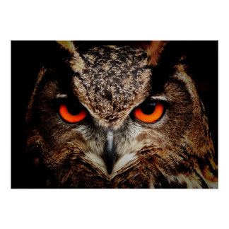 Scary Red Eyes Eagle Owl Poster