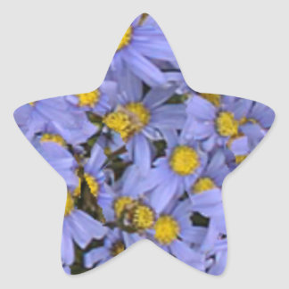 Scattered bunch of blue daisies, very pretty! star sticker