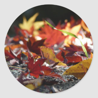 Scattered Fall Leaves Round Stickers