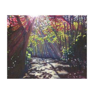Scattered light 2013 canvas prints