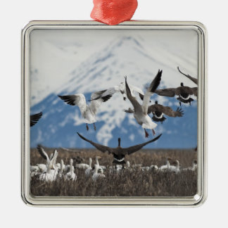 Scattering Geese Christmas Ornament