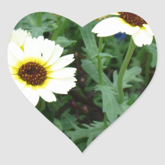 Scattering of Daisies Heart Sticker