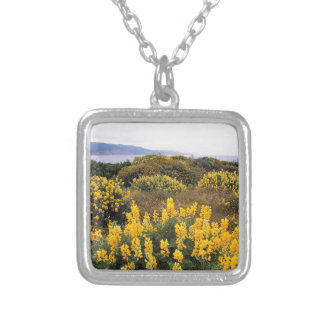 Scene Butter Lupine State Reserve California Necklaces