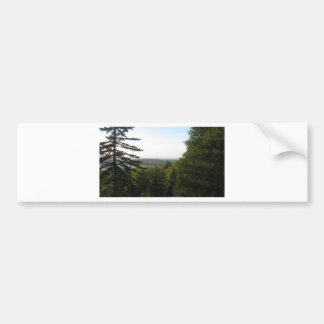 Scene of Tranquility Bumper Stickers