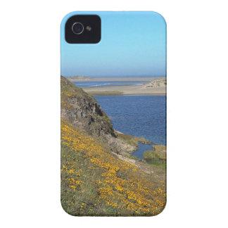 Scene Point Reyes Seashore California iPhone 4 Cover
