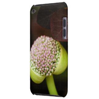 scene pristine iPod Case-Mate case