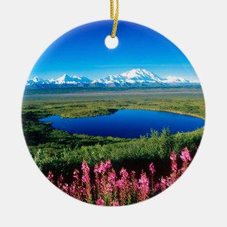 Scene Tundra Mount Mckinley Denali Alaska Christmas Ornament