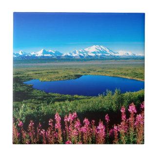 Scene Tundra Mount Mckinley Denali Alaska Small Square Tile