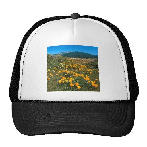 Scene Yellow Brick Road California Poppies Trucker Hats