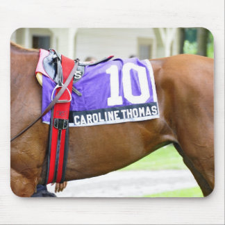 Scenes from Saratoga Mousepads
