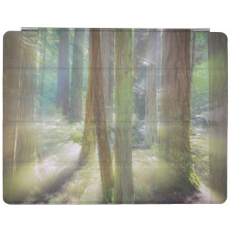 Scenic Beach State Park iPad Cover