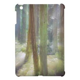 Scenic Beach State Park iPad Mini Cover