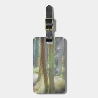 Scenic Beach State Park Luggage Tag