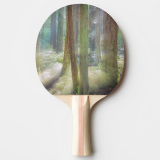 Scenic Beach State Park Ping Pong Paddle