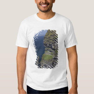 Scenic Cliffs of Moher and O'Brien's Tower T Shirts