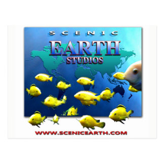 Scenic Earth Studios FIne Art Gallery 3D Postcard