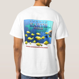 Scenic Earth Studios School of Fish men's T-Shirt