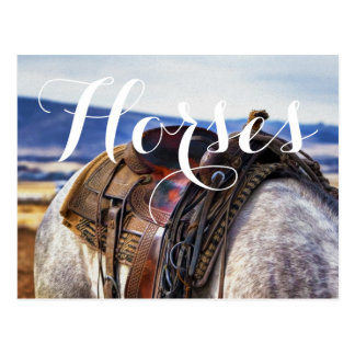 Scenic Horse and Saddle Postcard