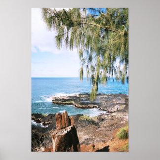 Scenic Kauai on Canvas Print