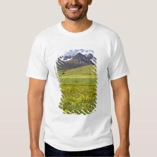 Scenic landscape of Svarfadardalur valley Tee Shirt