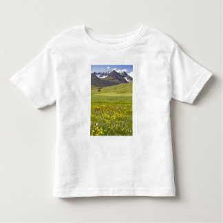 Scenic landscape of Svarfadardalur valley Toddler T-Shirt
