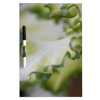 scenic leaf dry erase whiteboards