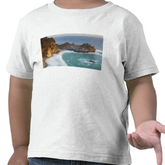 Scenic McWay Falls tumbles into the beach and 2 Shirt