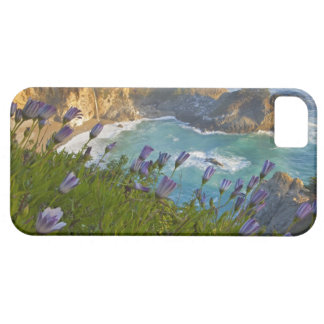 Scenic McWay Falls tumbles into the beach and Case For The iPhone 5