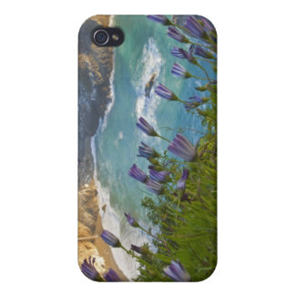 Scenic McWay Falls tumbles into the beach and Cover For iPhone 4