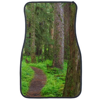 Scenic of old growth forest car mat