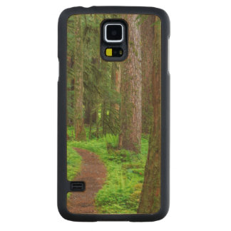 Scenic of old growth forest carved maple galaxy s5 case