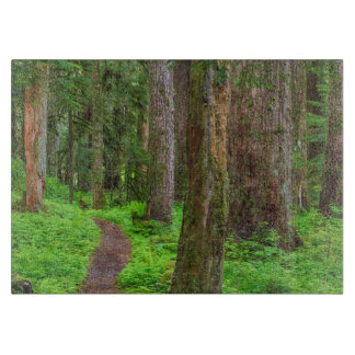 Scenic of old growth forest cutting board