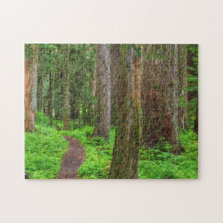 Scenic of old growth forest jigsaw puzzle