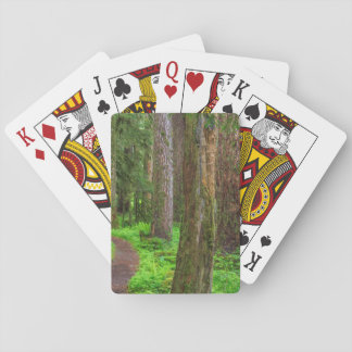Scenic of old growth forest playing cards