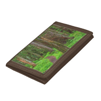 Scenic of old growth forest tri-fold wallet