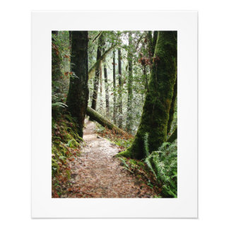 Scenic Oregon Photography Print Photographic Print
