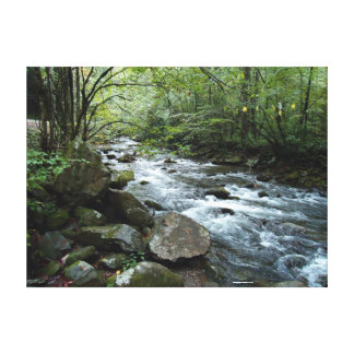Scenic river wrapped canvas