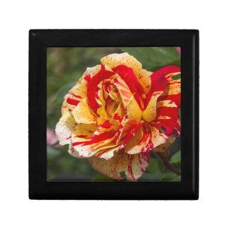 scenic roses gift box