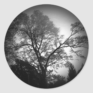 Scenic Tree Sticker