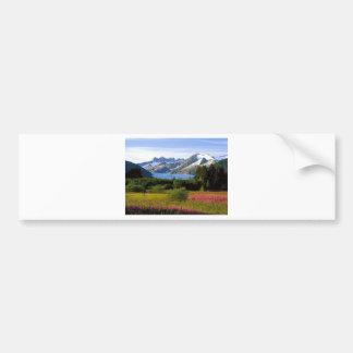 Scenic View Bumper Sticker