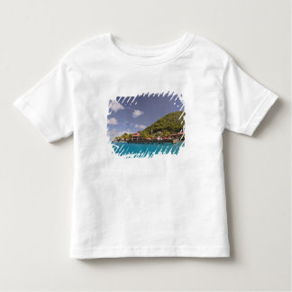 Scenic view of Bitter End Yacht Club Virgin T-shirt