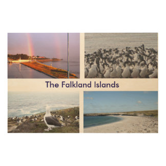 Scenic View of Falklands Wood Wall Decor