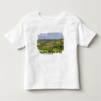 Scenic view of farmland south of Arcadia, 2 Tees