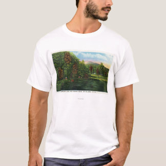 Scenic View of Shadow Lake and Indian Head T-Shirt