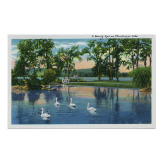 Scenic View of Swans on the Lake Poster
